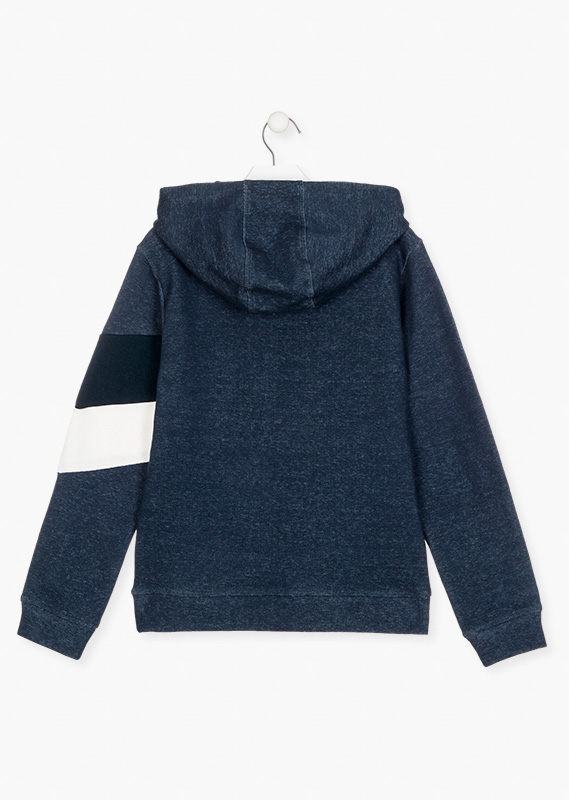Blue sweatshirt with embroidered graphic.